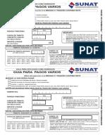 PAGOS V.pdf