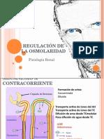 (10)Mecanismo a Contracorriente-RENAL
