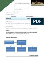 Plan de Trabajo Adminis.docx POLLOS