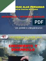 Puntos Cefalom Tricos