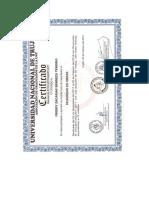 Certificado Curso Seguridad de Obras - Unt