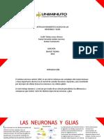 Artículo Periodístico Acerca de Las Neuronas y Glías