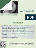 Auto Lesion