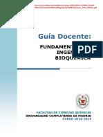 GBQ_Guia Docente Fundamentos de Ingenieria Bioquimica_2014_FINAL