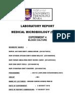 Experiment 4 Blood Culture
