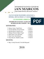 UNMSM EcologíaPráctica HumedalesElParaíso InformeGrupal Turno2