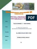 Ensayo Microfinanzas