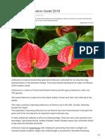 Agricultureguruji.com-Anthurium Cultivation Guide 2018