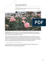 Agricultureguruji.com-Carnation Cultivation Guide 2018