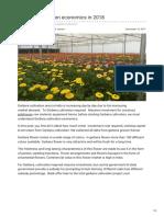 Agricultureguruji.com-Gerbera Cultivation Economics in 2018