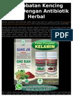 Pengobatan Kencing Nanah Dengan Antibiotik Herbal