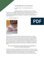 080401_ponenciacompetenciasbasic
