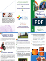32_folleto_consejo_vivir_diabetes.pdf