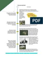 Tipologi History Arboretum