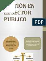 Gestión en El Sector Publico d