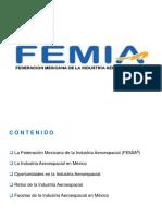 FEMIA-CIIIA-06.27.12 Benito Gritzewsky.ppt