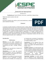 Apunte Arias Ayala Cabezas Informe N2