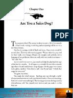 Sale Dogs