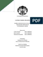 LAPORAN_KERJA_PRAKTIK_PABRIK_AMMONIUM_SU.pdf