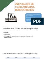 HIDROCARBUROS SUELOS1.pptx