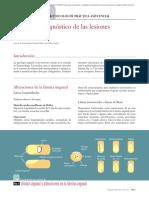 10.010 Protocolo diagnóstico de las lesiones ungueales.pdf