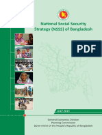 National Social Security Strategy (NSSS)