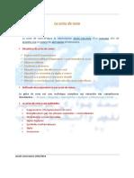 4- Prise de notes.pdf