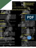 ppt sendler.pdf