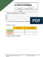 guademiscelnea-fotosntesis-161204233925