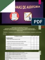 - Programas de Auditoria