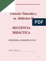 Secuencia Didactica de Aborto
