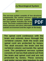 The Sensory Neurological System