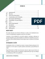 105525982 Monografia de La Retama