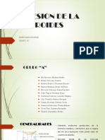 expo anato grupo A revision 1 (2).pptx