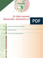 70992.pdf