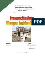 Prevencion de Riesgos Ambientales