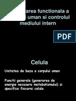 curs 1 - principii general.ppt