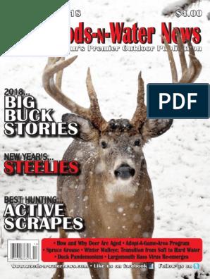 Ball AU Don Clover food plot seed Deer Turkey 1 lb, 3 lb, 10lb