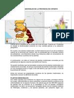 Plantas Medicinales de La Provincia de Cutervo