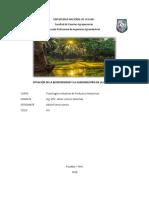 SITUACION DE LA AMAZONIA.docx