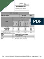 Matriz de Responsabilidade Modelo RACI