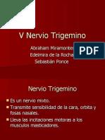 V Nervio Trigemino