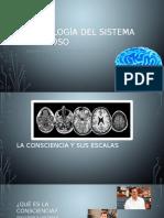 Semiología del Sistema Nervioso.pptx
