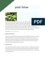 Manfaat Psidii Folium 1