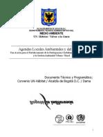 Analisis de Situacion. Ciudad Bolivar