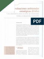 Las Evaluaciones Ambientales Estrategicas EAEs 1