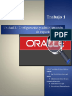 223827891 Conceptos Basicos Sobre Oracle DataBase 11g