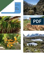 Extension Poblacion Capita y Agricultura Casanare
