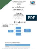 virus-herpes-simplex-virologia.pptx
