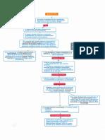 Apelacion USAC.pdf
